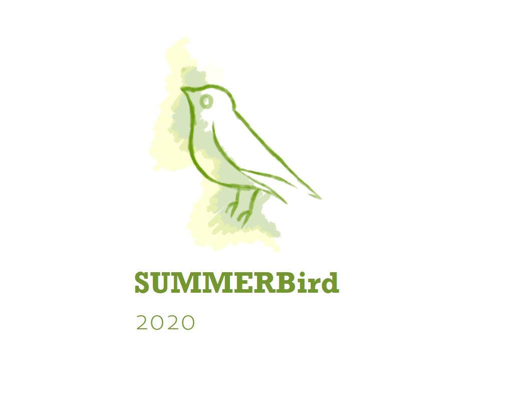 Nachbericht SUMMERBird 2020